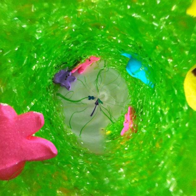 Easter Basket cyclone